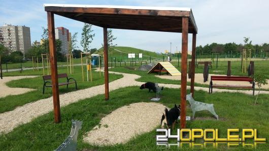Park dla psów na osiedlu Armii Krajowej otwarty