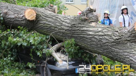 Wichury na Opolszczyźnie. Drzewo przygniotło 2 samochody na Pasiece.