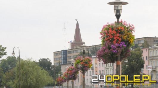 Wesprzyj Opole w konkursie na najpiękniej ukwiecone miasto w Polsce