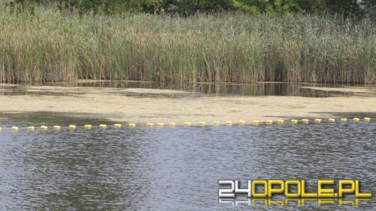 Kąpielisko Malina w opłakanym stanie. Ratusz szuka rozwiązania.