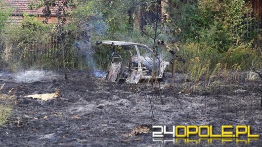 Pożar suchych traw w Roszkowicach