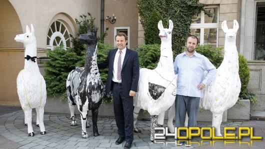 278 projekcji na 14. Festiwalu Filmowym Opolskie Lamy!