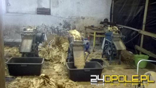 2,5 tony tytoniu zabezpieczono w nielegalnej wytwórni pod Gogolinem