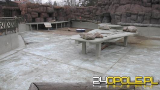 Opolskie zoo przygotowuje się do wiosny