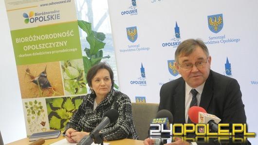 Na opolskie wsie czeka ponad pół miliona złotych