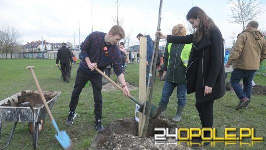 Opolanie sadzili drzewa na 800-lecie miasta