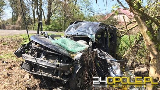 Auto uderzyło w drzewo, interweniował śmigłowiec LPR