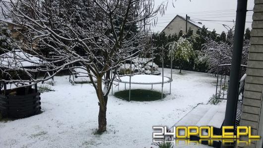 Zima na zdjęciach naszych Czytelników