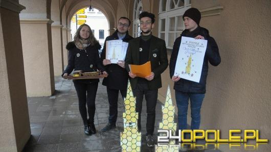 Młodzi Konserwatyści apelują o postawienie w Opolu miejskich uli