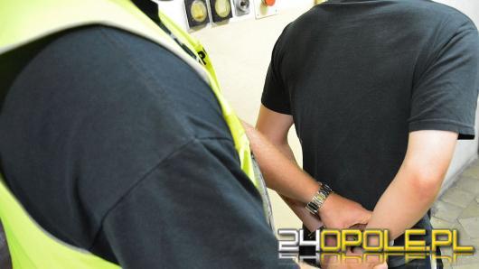 Narkotyki i dewastacja - 21-latkowie z zarzutami