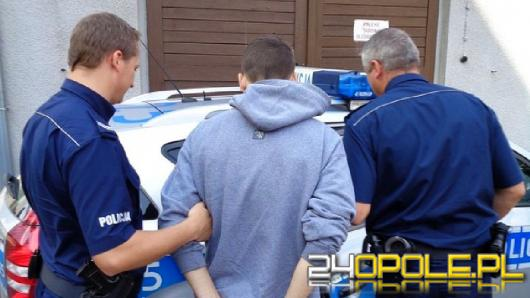 Narkotyki, sadzonki i handel - 7 osób z zarzutami
