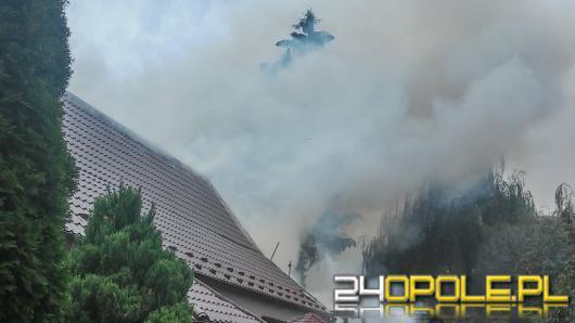Pożar stolarni w Lewinie Brzeskim