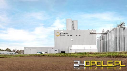 740 ton przemiału pszenicy na dobę. Zakład w Straduni k/Opola ruszył po inwestycji