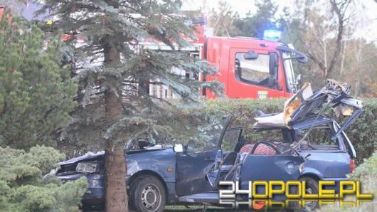 Dobrzeń Wielki: Drzewo przewróciło się na jadący pojazd, nie żyje kierowca.