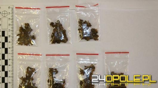 Poszukiwany za przestępstwa narkotykowe wpadł z kolejnymi narkotykami