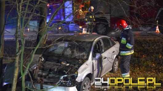 Kolejne auto wypadło z drogi. Jedna osoba ranna w Dąbrowie