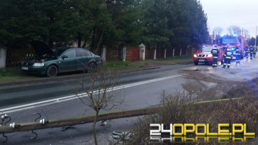 Biestrzykowice: 20-latek wypadł z drogi i złamał słup energetyczny