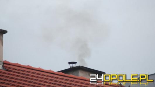 Kontrole i mandaty. Jak Straż Miejska realnie walczy ze smogiem w mieście?