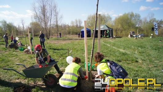 Opolanie wspólnie sadzą drzewa przy kąpielisku Bolko