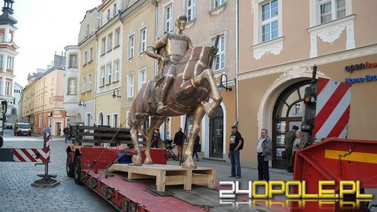 Na rynek wjechał pomnik księcia Kazimierza I Opolskiego, trwają przymiarki