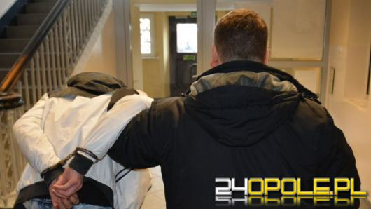 Policjanci rozbili grupę podejrzaną o włamania i kradzieże