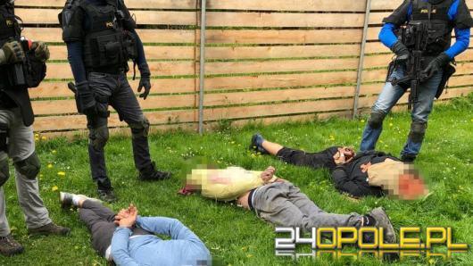 Współpraca CBŚP i policji czeskiej - zlikwidowane plantacje, zabezpieczona marihuana