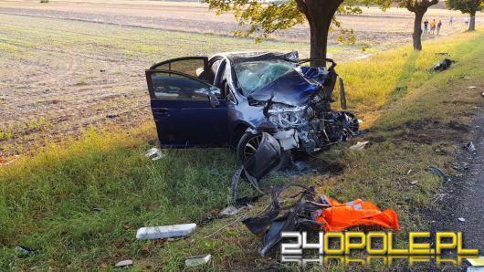 Śmiertelny wypadek na drodze krajowej 94 w Izbicku. Nie żyje 65 - letni mężczyzna.