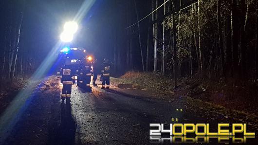 Niespokojna noc dla strażaków, dziesiątki powalonych drzew