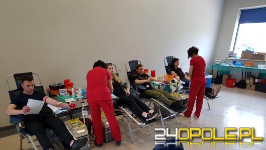 105 osób oddało krew podczas pierwszego dnia wampiriady. To rekord