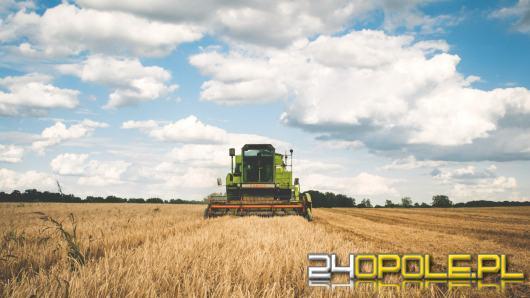 Oszukali 116 rolników na kwotę 3,5 mln złotych. Zatrzymanie biznesmenów sektora rolniczego