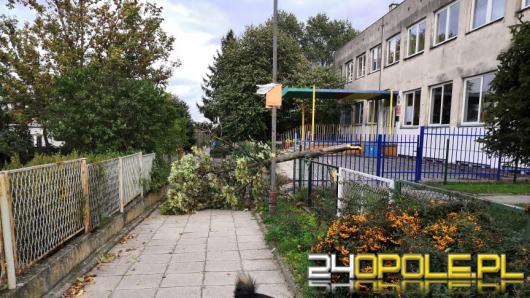 Ponad 260 interwencji straży w związku z silnym wiatrem