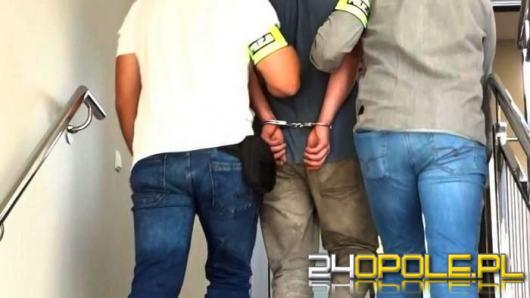 Podejrzany o włamania do altanek w rękach policjantów