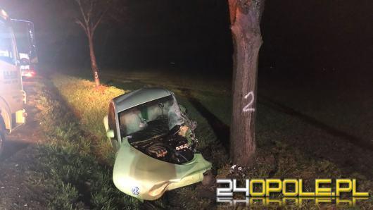 Czołowe zderzenie pojazdów na DK46