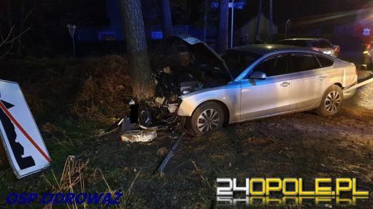 Kierowca wjechał w drzewo. Został przewieziony do szpitala