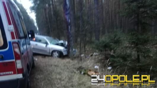 Staniszcze Małe: Auto uderzyło w drzewo, kierujący był pijany