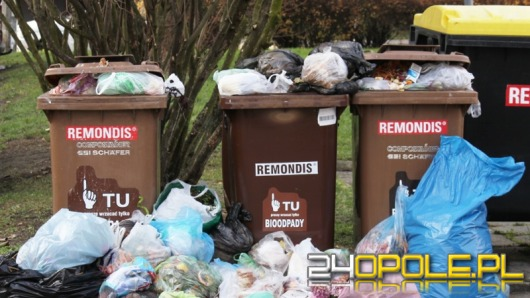 Opolanie mają sporo problemów z segregacją śmieci
