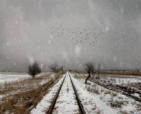 KINO MISTRZÓW - Zimowy sen