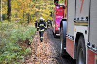 Ćwiczenia Straży Pożarnej w Nadleśnictwie Kup - 8218_foto_24opole_059.jpg