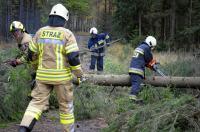 Ćwiczenia Straży Pożarnej w Nadleśnictwie Kup - 8218_foto_24opole_075.jpg