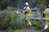Ćwiczenia Straży Pożarnej w Nadleśnictwie Kup - 8218_foto_24opole_077.jpg