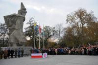 Obchody 100 Rocznicy Odzyskania Niepodległości w Opolu - 8224_foto_24opole_310.jpg