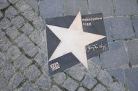 6 Nowych gwiazd w Alei Gwiazd Polskiej Piosenki - 8522_kfpp_gwiazdy_24opole_317.jpg