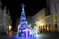 Opole w Świątecznej Odsłonie - 8559_foto_24opole_0091.jpg