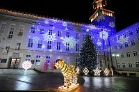 Opole w Świątecznej Odsłonie - 8559_foto_24opole_0137.jpg