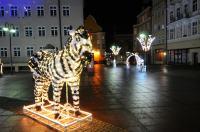 Opole w Świątecznej Odsłonie - 8559_foto_24opole_0141.jpg