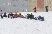 Opolanie ruszyli na sanki do parku na osiedlu Armii Krajowej  - 8573_zima_24opole_0100.jpg