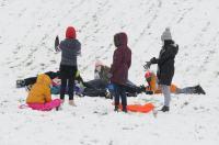 Opolanie ruszyli na sanki do parku na osiedlu Armii Krajowej  - 8573_zima_24opole_0115.jpg