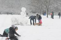Opolanie ruszyli na sanki do parku na osiedlu Armii Krajowej  - 8573_zima_24opole_0202.jpg