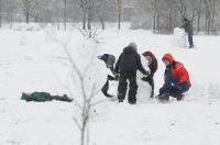 Opolanie ruszyli na sanki do parku na osiedlu Armii Krajowej  - 8573_zima_24opole_0236.jpg