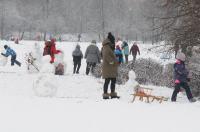 Opolanie ruszyli na sanki do parku na osiedlu Armii Krajowej  - 8573_zima_24opole_0249.jpg